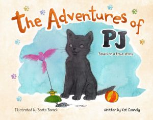 The Adventures of PJ