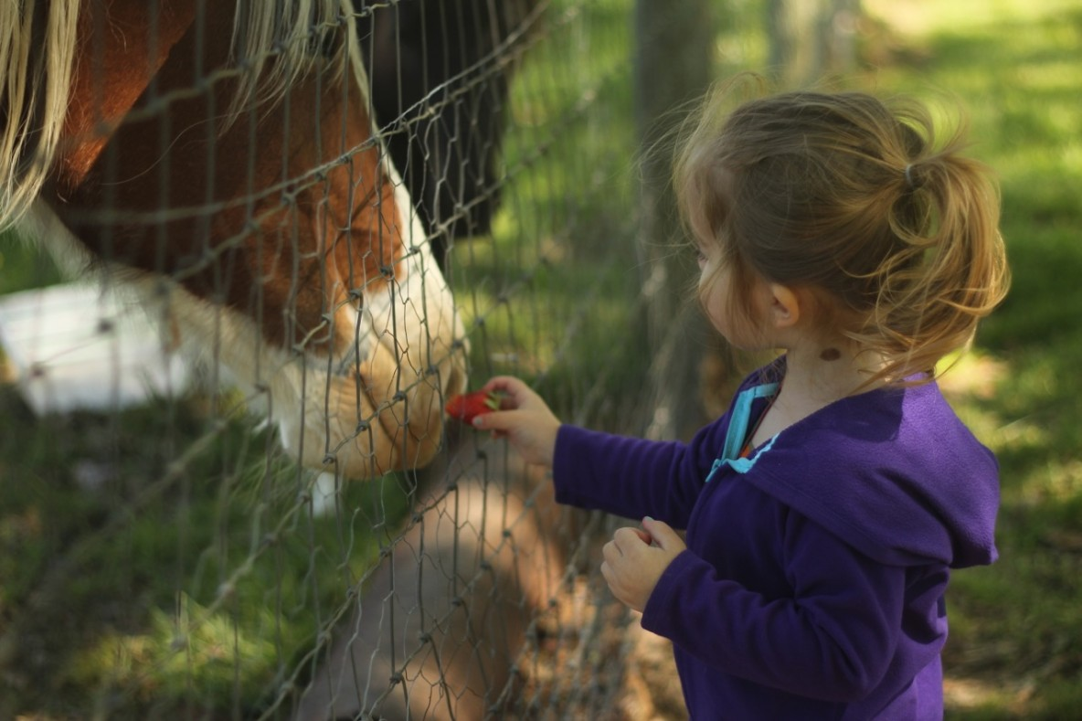I Want My Daughter to Be Compassionate