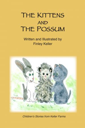 The Kittens and The Possum