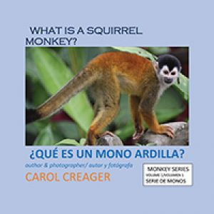 What Is A Squirrel Monkey?