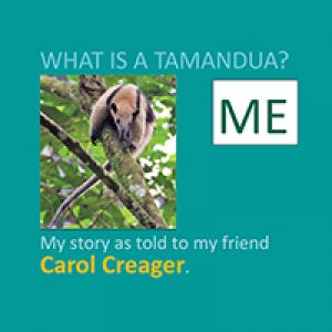 What Is A Tamandua?