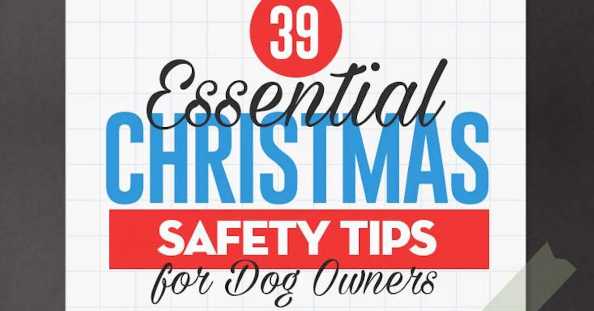 Safety Tips Pets