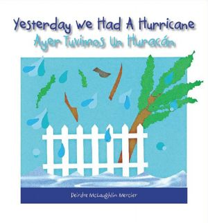 Award-Winning Children's book Yesterday we had a hurricane