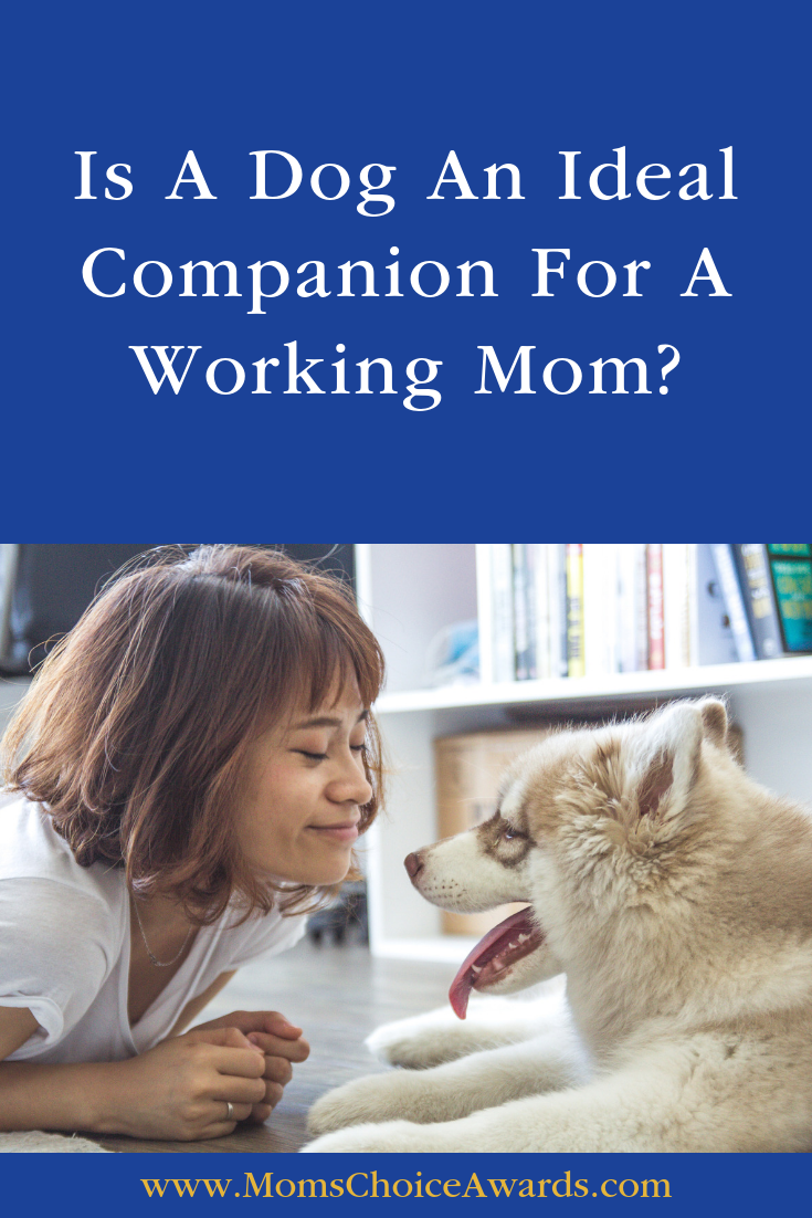 dog companion working mom