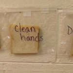 Teacher's Visual Lesson on Hand Washing Will Totally Gross You Out
