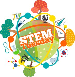 STEM Tuesday covid free